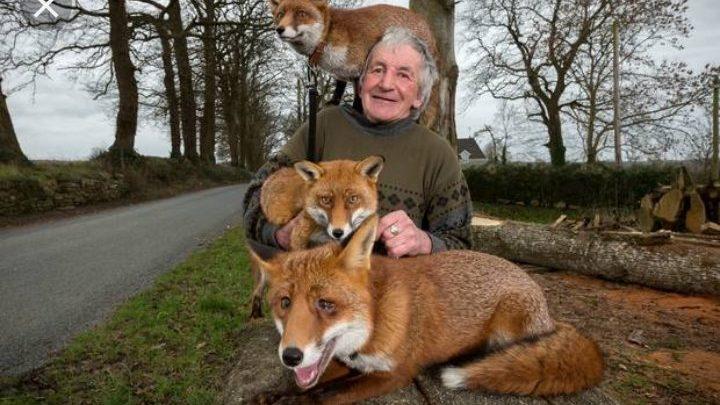Salva la vita alle volpi e diventa il loro papà adottivo
