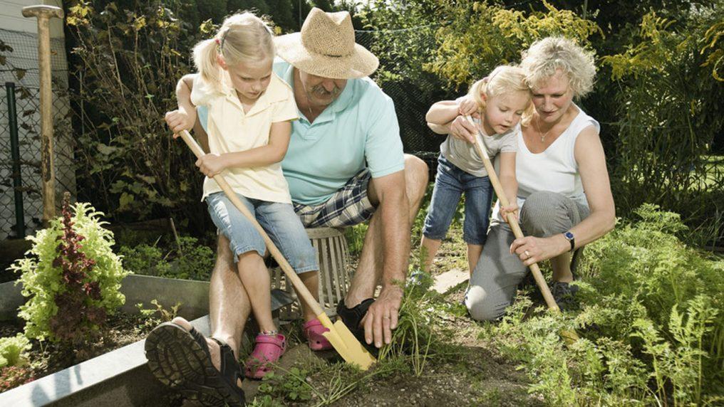 Il lavoro dei nonni vale 800€ al mese in Svezia! E in Italia?